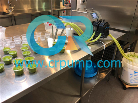 Filling peristaltic pump for Fruit and Vegetable paste filling
