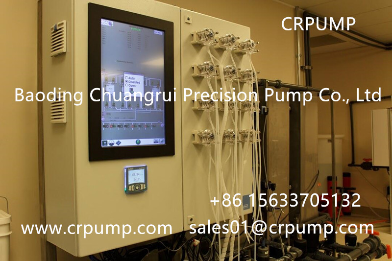 CR peristaltic pump for Water treatment